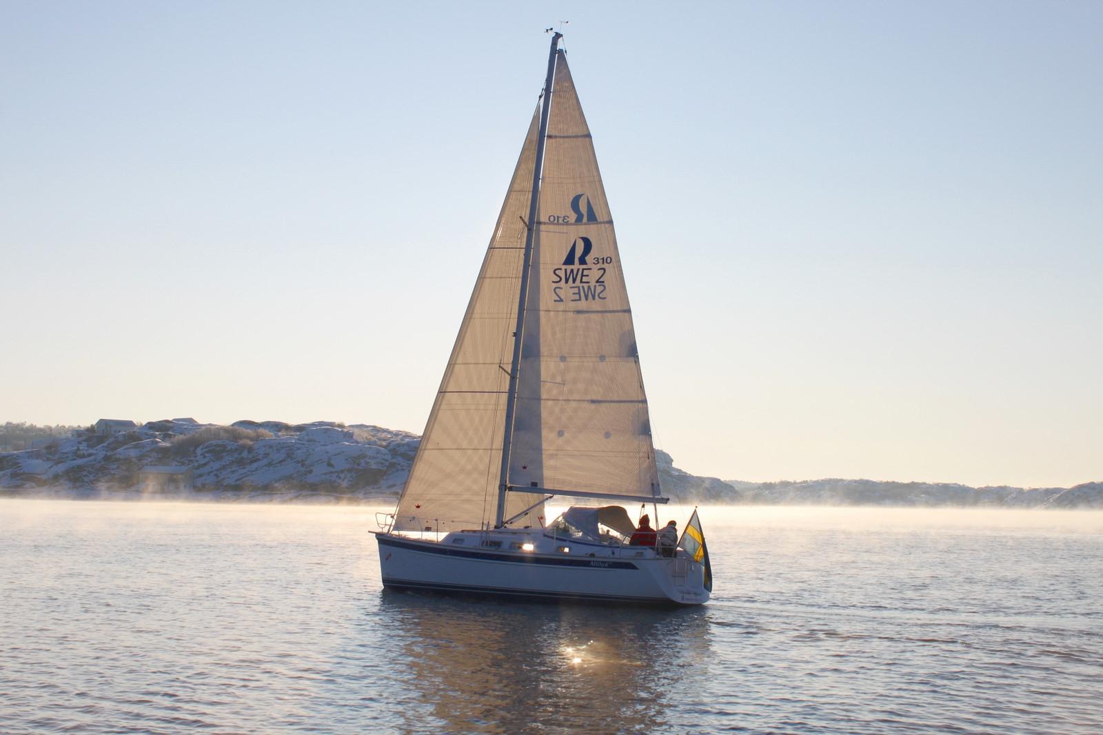 Парусная яхта Hallberg-Russy 310